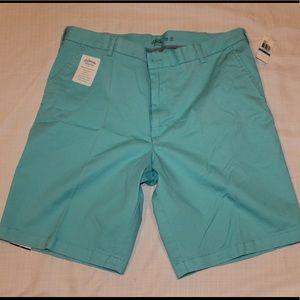 Izod Mens turquoise shorts